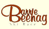 beehag logo with web background copy