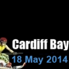 Cardiff Bay British National Info
